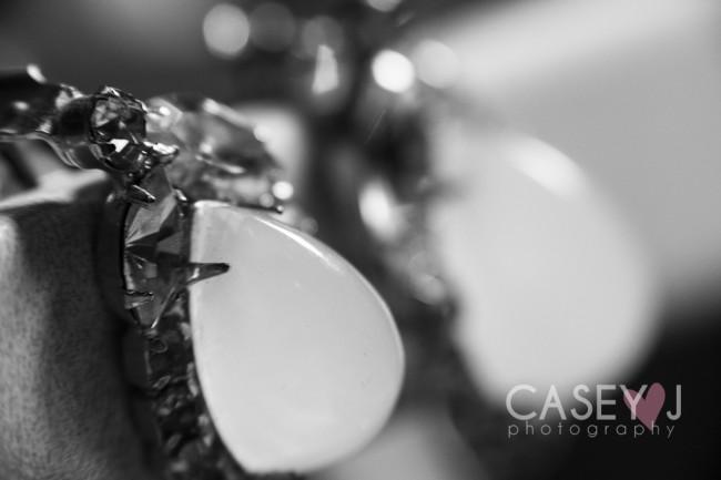Casey J Photography, macro photography, still life macro